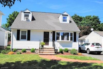 Morris Twp. Single Family Home For Sale: 14 Gregory Ave
