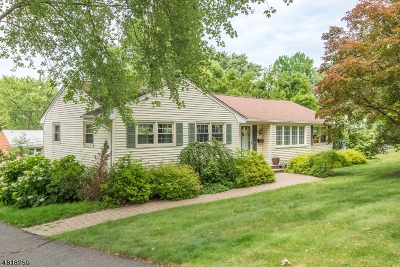 Parsippany-Troy Hills Twp. Single Family Home For Sale: 3 Queen St