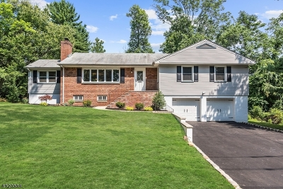 West Orange Twp. Single Family Home For Sale: 66 Dogwood Rd