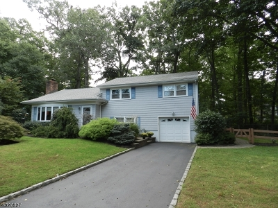 Fanwood Boro Single Family Home For Sale: 16 Ridge Way