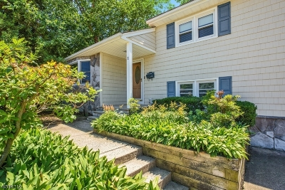 Cranford Twp. Single Family Home For Sale: 1 Chester Lang Pl