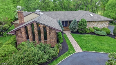 Scotch Plains Twp. Single Family Home For Sale: 18 Greensview Dr