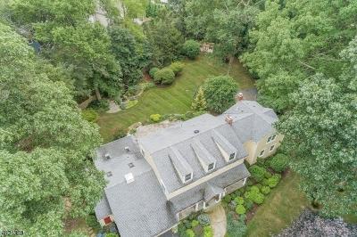 Florham Park Boro Single Family Home For Sale: 15 Parker Ct
