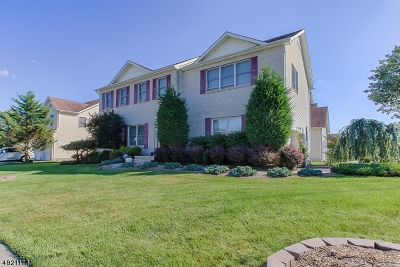 Parsippany-Troy Hills Twp. Single Family Home For Sale: 53 Erica Way