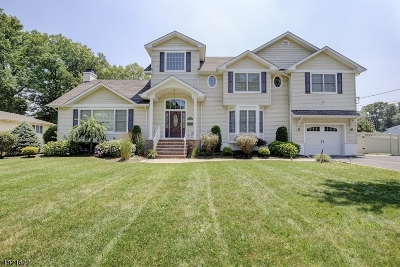 CLARK Single Family Home For Sale: 179 Meadow Rd