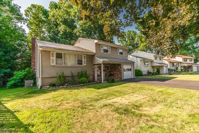 ROSELLE Single Family Home For Sale: 225 Audrey Ter