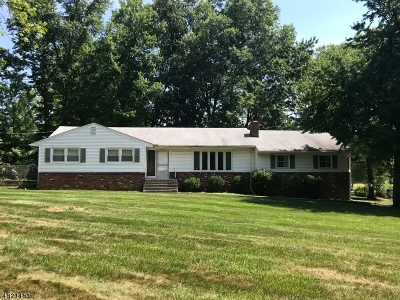 Scotch Plains Twp. Single Family Home For Sale: 11 Essex Rd