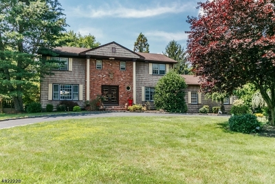 Scotch Plains Twp. Single Family Home For Sale: 5 Unami Ln