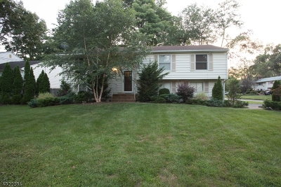 Livingston Twp. Single Family Home For Sale: 27 Springbrook Rd