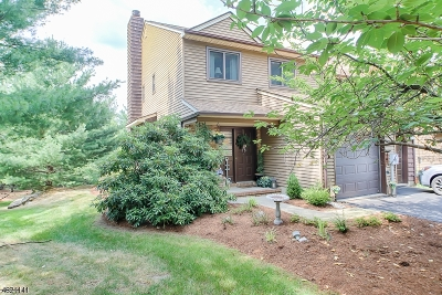 Parsippany-Troy Hills Twp. Condo/Townhouse For Sale: 2 Patriots Rd