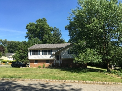 Randolph Twp. Single Family Home For Sale: 14 Cedar Ridge Ln