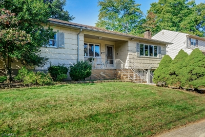 Cranford Twp. Single Family Home For Sale: 204 Lambert St