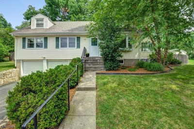 Morris Plains Boro Single Family Home For Sale: 34 Overlook Trl