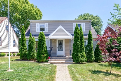 Passaic City Single Family Home For Sale: 191 Willet St