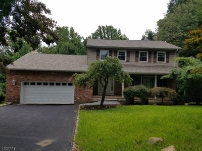 Randolph Twp. Single Family Home For Sale: 12 Maple Dr