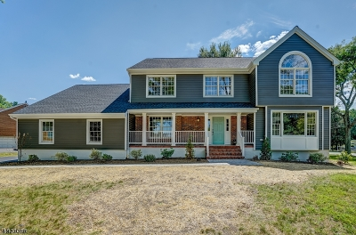 Berkeley Heights Twp. Single Family Home For Sale: 5 Murray Hill Blvd