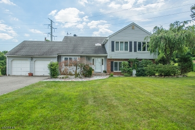 East Hanover Twp. Single Family Home For Sale: 26 Dartmoor Road