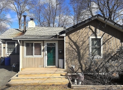 Parsippany-Troy Hills Twp. Single Family Home For Sale: 32 Iroquois Avenue