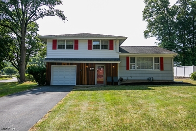 Boonton Town Single Family Home For Sale: 40 Dorian Rd