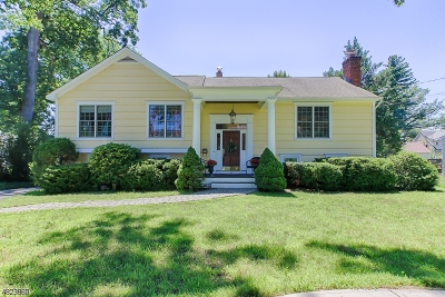 Morristown Town Single Family Home For Sale: 15 Rosemilt Pl