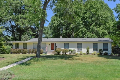 Parsippany-Troy Hills Twp. Single Family Home For Sale: 19 Jean Ter