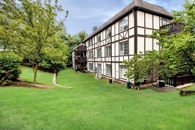 Morris Twp. Condo/Townhouse For Sale: 64 Village Dr