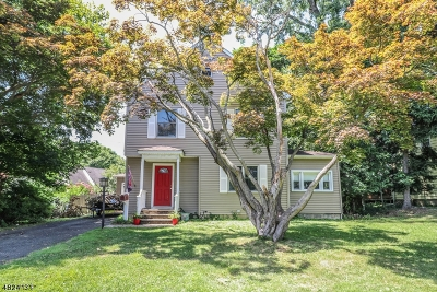 Cranford Twp. Single Family Home For Sale: 1 Samoset Rd