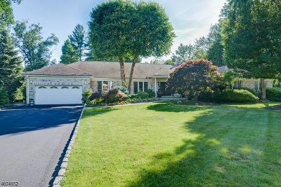 Livingston Twp. Single Family Home For Sale: 25 Ross Rd