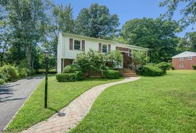 Livingston Twp. Single Family Home For Sale: 14 Ashwood Dr