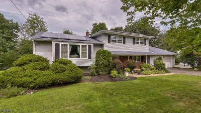 West Orange Twp. Single Family Home For Sale: 6 Syme Ave