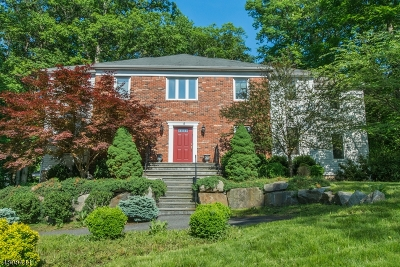 Randolph Twp. Single Family Home For Sale: 10 Spring Hill Ct