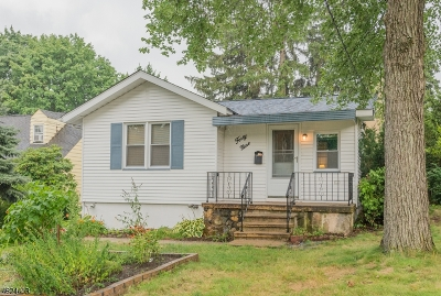 Parsippany-Troy Hills Twp. Single Family Home For Sale: 49 Longview Ave