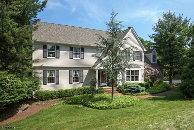 Peapack Gladstone Boro Single Family Home For Sale: 15 Deer Path