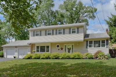 Parsippany-Troy Hills Twp. Single Family Home For Sale: 8 Fenwick Pl
