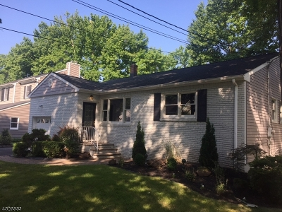 Scotch Plains Twp. Single Family Home For Sale: 2125 Meadow View Rd