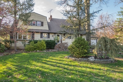 East Hanover Twp. Single Family Home Active Under Contract: 99 Mc Kinley Ave