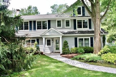 Summit City Single Family Home For Sale: 103 Canoe Brook Pky