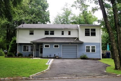 Fanwood Boro Single Family Home For Sale: 44 Locust Ave
