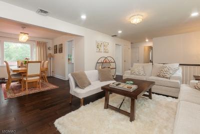 Livingston Twp. Single Family Home For Sale: 46 Brandon Ave