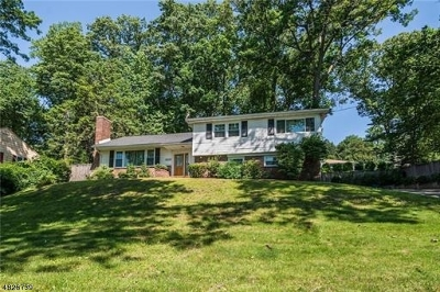 Mountainside Boro Single Family Home For Sale: 1474 Deer Path