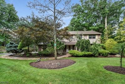 Livingston Twp. Single Family Home For Sale: 21 Kearney Ter