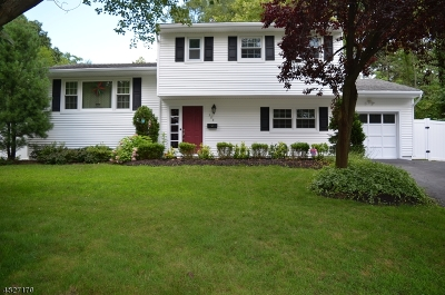West Orange Twp. Single Family Home For Sale: 208 St Cloud Ave
