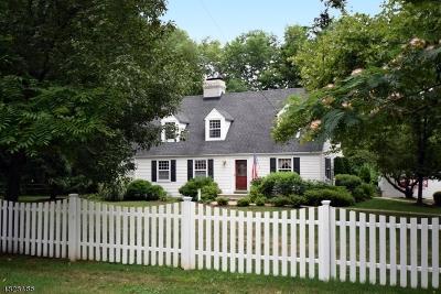 Florham Park Boro Single Family Home For Sale: 94 Ridgedale Ave/Parker Ct