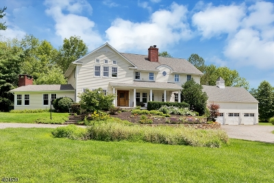 Bedminster Twp. Single Family Home For Sale: 780 Larger Cross Rd