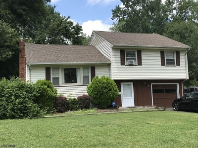 East Hanover Twp. Single Family Home For Sale: 28 Chicjon Ln