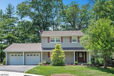 West Orange Twp. Single Family Home For Sale: 17 Edgar Rd