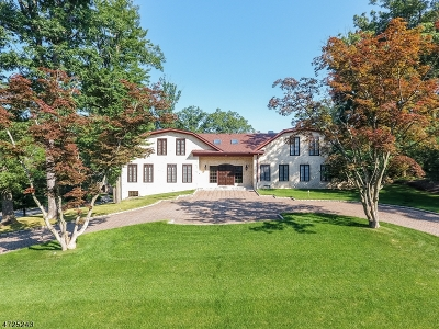 Millburn Twp. Single Family Home For Sale: 166 Hartshorn Dr