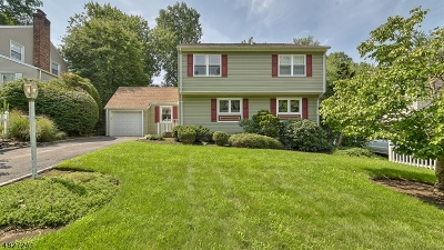 Livingston Twp. Single Family Home For Sale: 21 Longview Rd
