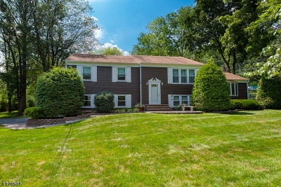 Morris Twp. Single Family Home For Sale: 5 Sand Spring Rd