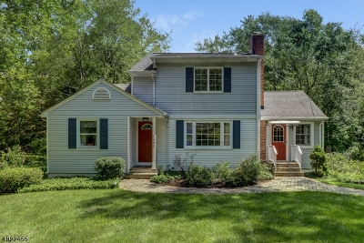 Chatham Twp. Single Family Home For Sale: 759 River Road